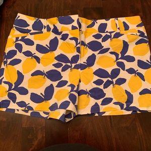 loft lemon shorts